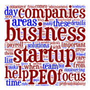 tag cloud of business type terms. Mainly ones are Companies, Business, Startup, Help, PEO