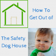 Stick house - How to get our of the safety dog house