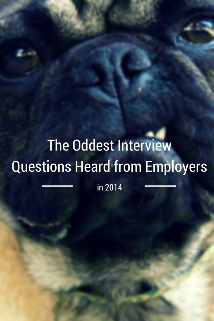odd interview questions of 2014