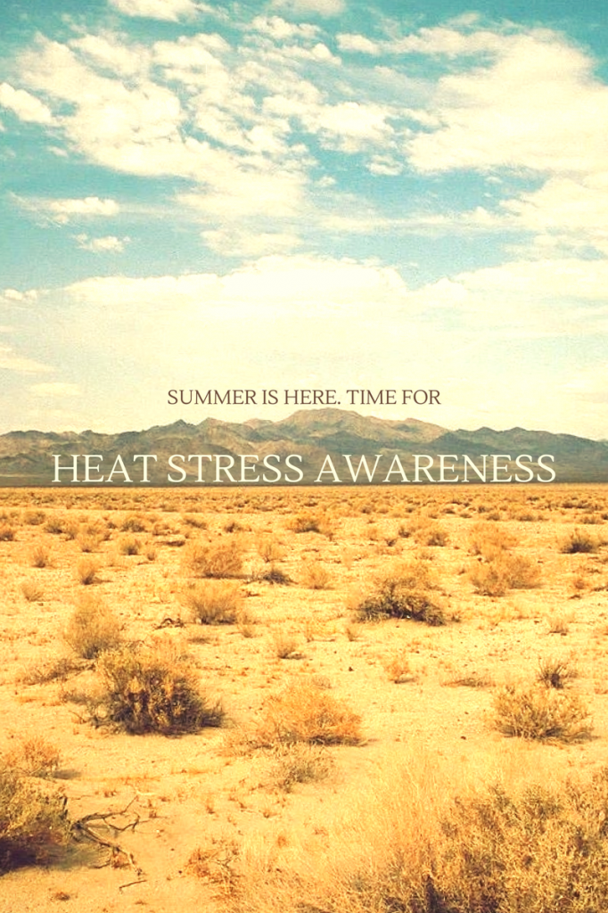 heat stress awareness