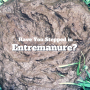 Pile of Manure - Have You Stepped In Entremanure