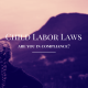 Woman with long braid looking out at a mountain - Child Labor Laws, are you in compliance?