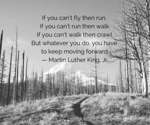 View of a forest in the winter with a snowy mountain in the background of the trees with Martin Luther Kind Jr. quote If you can't fly then run. If you can't run then walk. If you can't walk then crawl. But whatever you do, you have to keep moving forward.